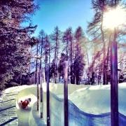 Bob in St. Moritz - Sursa - Justinkripps.ca