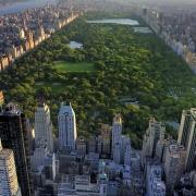 Centra Park New York - Sursa - Sofitel.com - vacanta