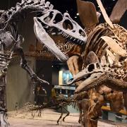 Dinozauri Muzeu Denver - Sursa - GardenParkDinos.com - vacanta