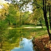 English Garden Munich - Sursa - GlobalData.com