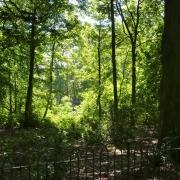 Heaton Park - Sursa - Blogspot.com