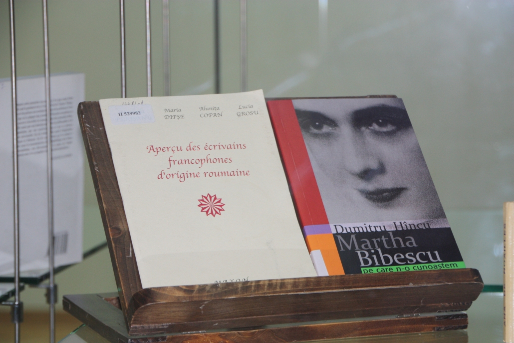 Biblioteca Nationala, ferestre automate