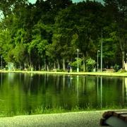 Parcul Central Cluj Napoca - Sursa - Youtube.com