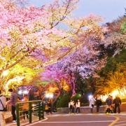 Parcul Namsam - Sursa - Blogspot.com - O luna de vacanta